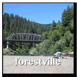 forestville town info