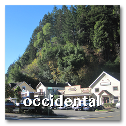 occidental town info