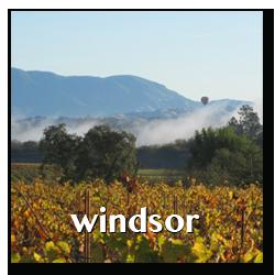 windsor town info