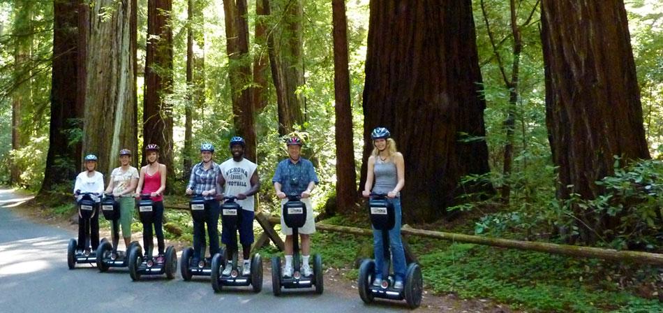 redwoods-slide4.jpg