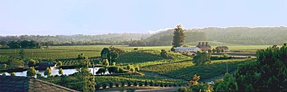 russian hill estate winery
