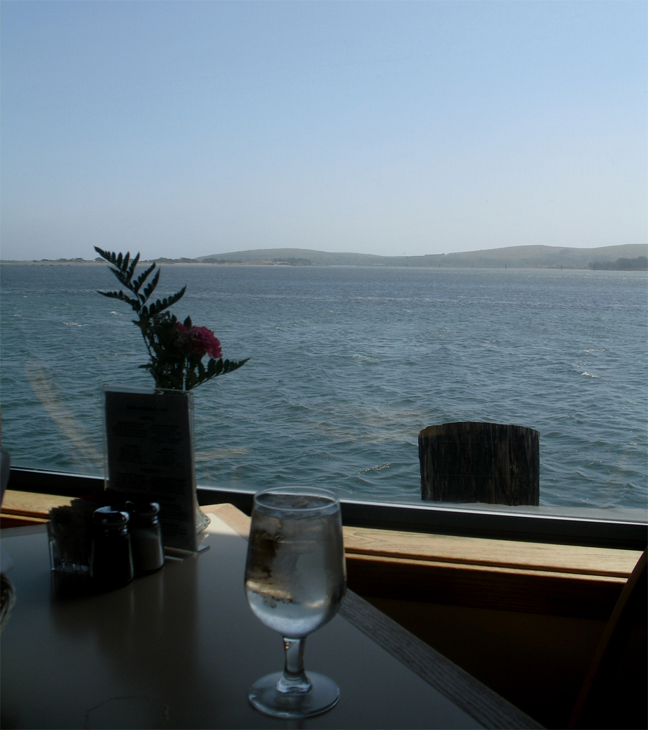 view from the tides wharf restaurant & bar