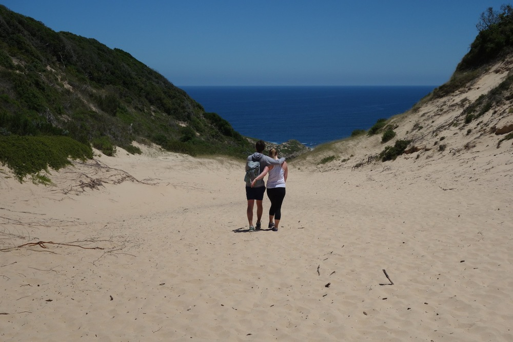 Sand dunes on the Robberg Preserve hike Plettenburg Bay, SA