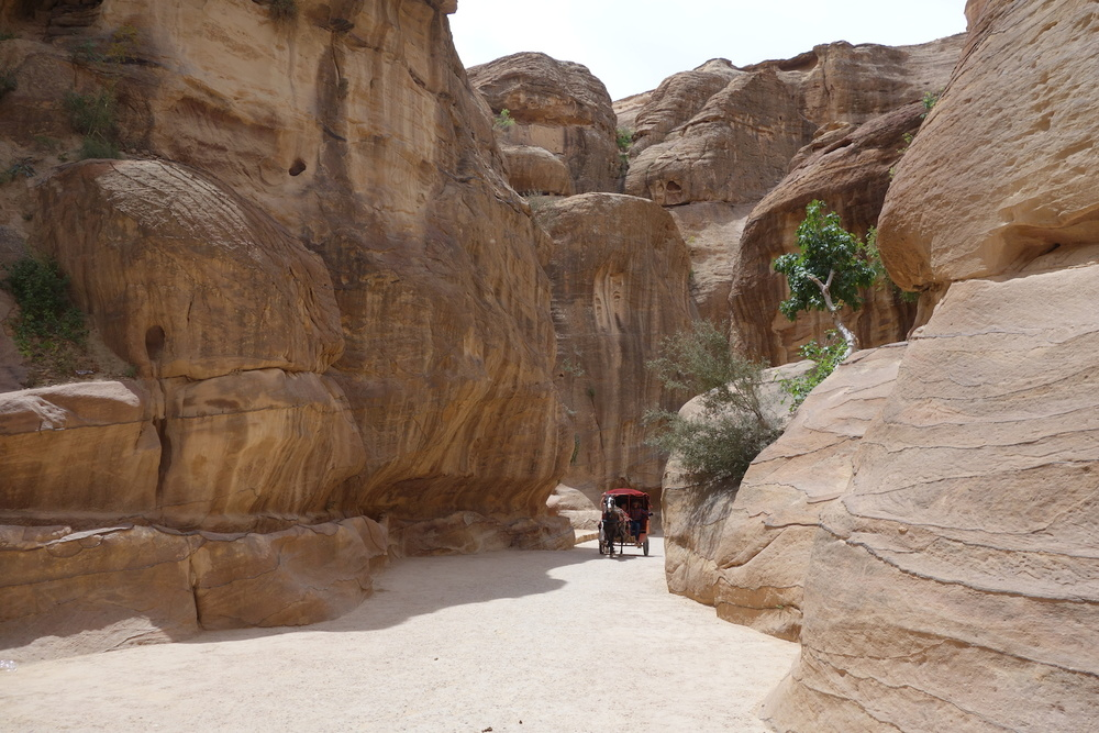 Horse-drawn carriage emerging from the Siq