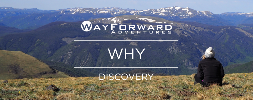 WHY-Discovery.png