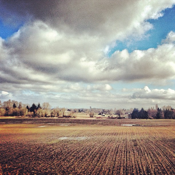 Sundays are flat & fast days. (at Sauvie Island)