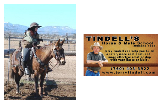 Jerry Tindell Mule School