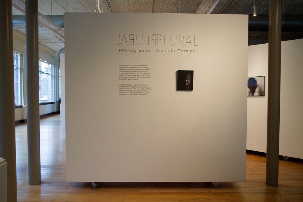 from Plural, Calvin College's 106 Gallery, Grand Rapids, MI Oct-Nov 2014
