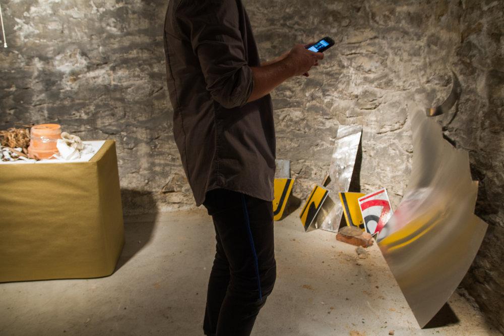 Briseur Coleoptere Gallery co-founder Case Michielsen performing the exhibition via social media, June 27, 2016.