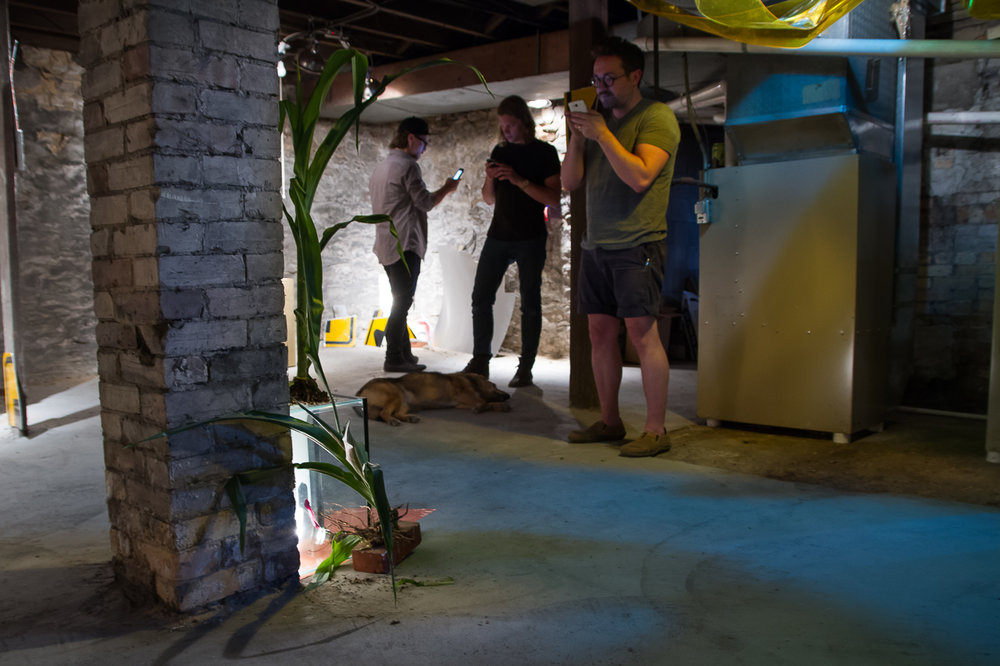 Briseur Coleoptere Gallery co-founders Case Michielsen and Cory VanderZwaag (background left and right) and artist Steven Rainey (foreground) performing the exhibition via social media, June 27, 2016.