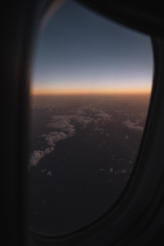 Flight_.jpg