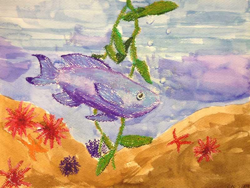Clara's Fish with Kelp