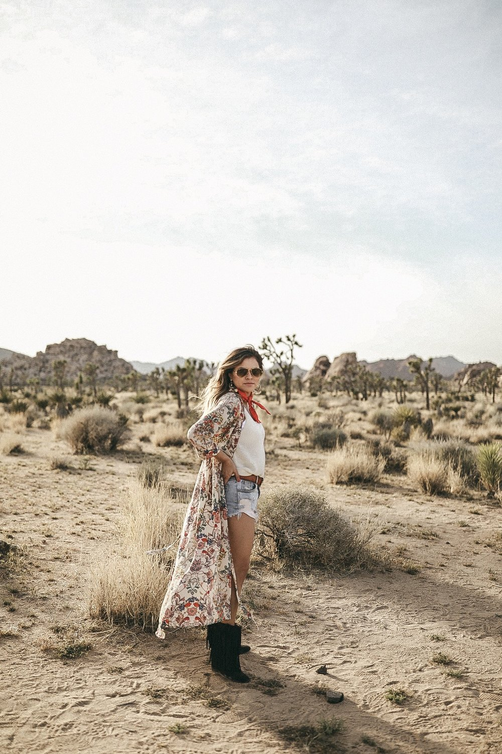 Find Me in the Desert - Joshua Tree, California