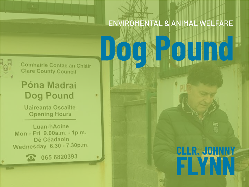 Dog Pound Cllr. Johnny Flynn