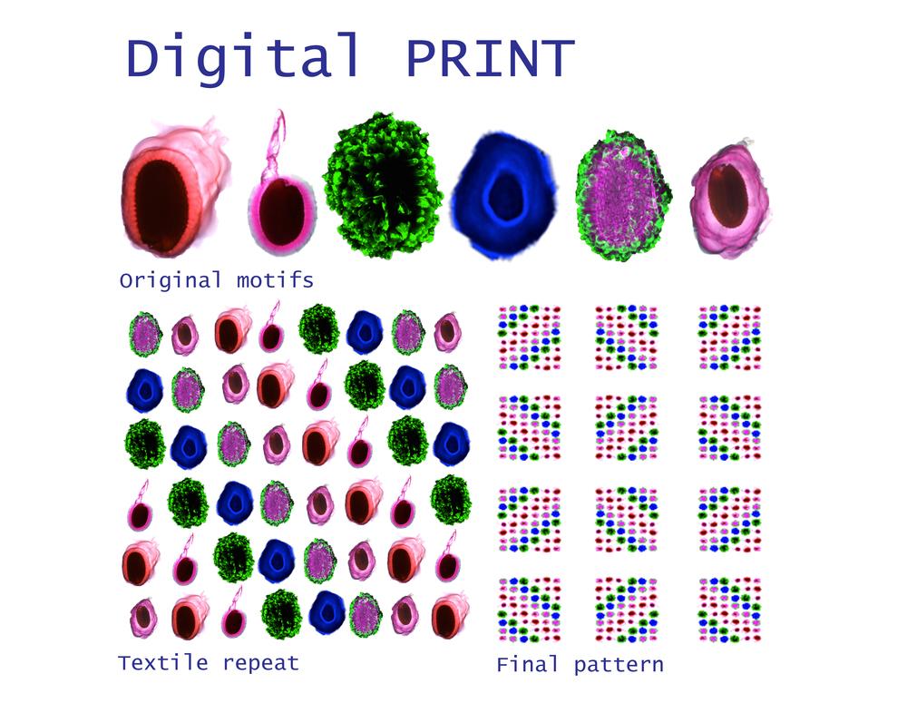 print.jpg