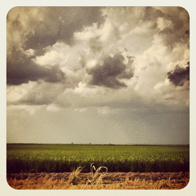 T-Storms over Mississippi Fields