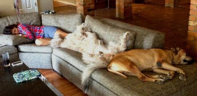 Sunday Afternoon Naps