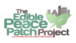 EDIBLE PEACE PATCH - ST. PETE DAY GIFT BOX