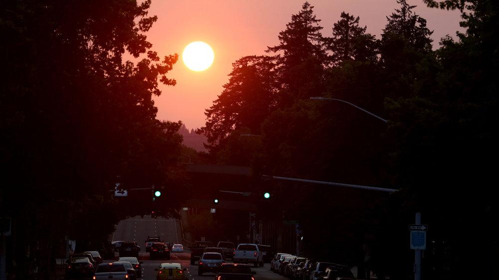 sunrise weekly email 1st.jpg
