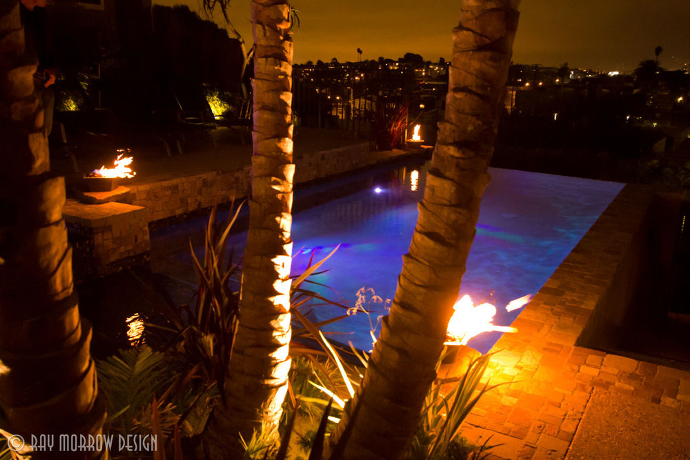 infinity-edge-pool-palm-trees-night-manhattan-beach.jpg