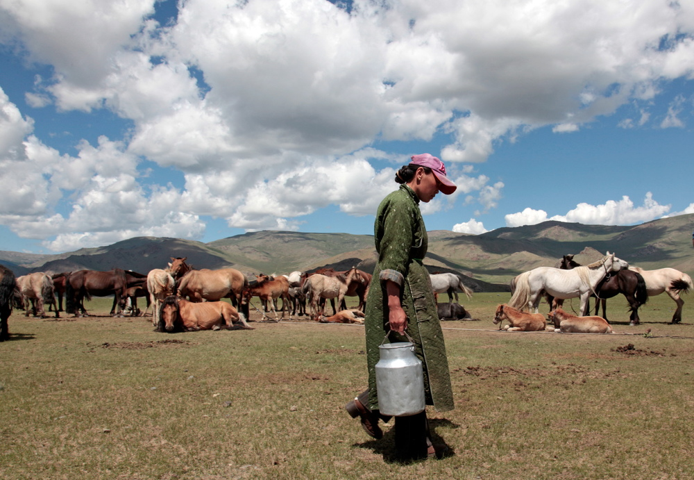Nomad, central Mongolia