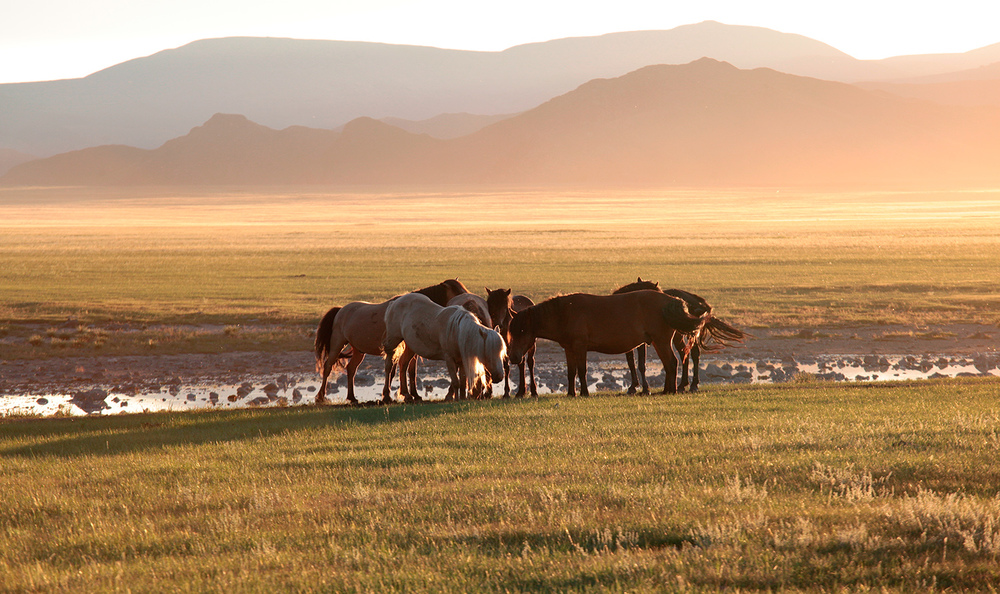 Chuluut Gorges, Central Mongolia
