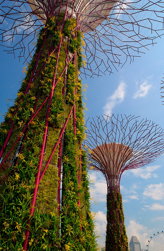 Gardens By The Bay, Artist Impression