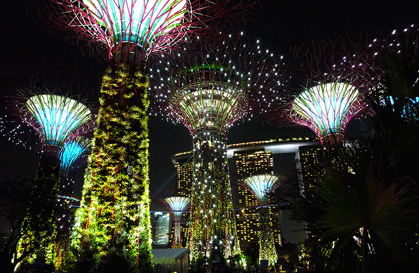 SuperTree Grove at night by Eric Tee (Courtesy)