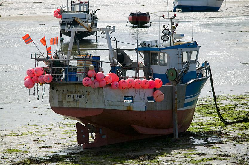 Marée basse dans le port de Korejou © SD