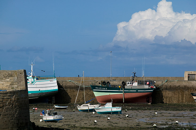 Marée basse dans le port de Roscoff © SD