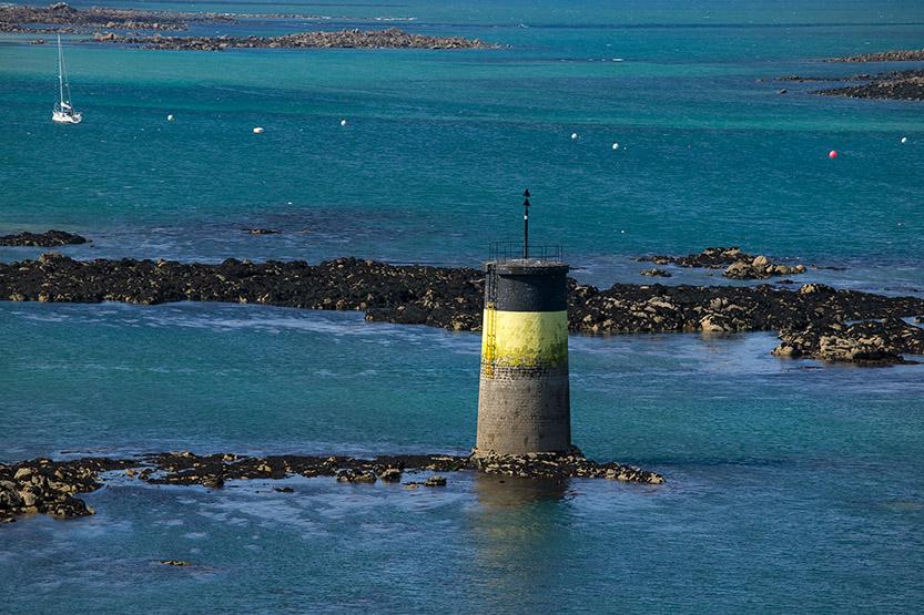 Dans le port de Roscoff © SD