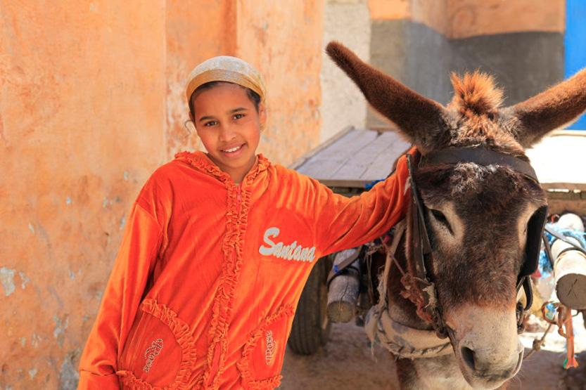 La jeune fille et l'âne, Azemmour