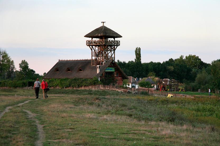 Réserve de Zasavica (Fruska Gora)