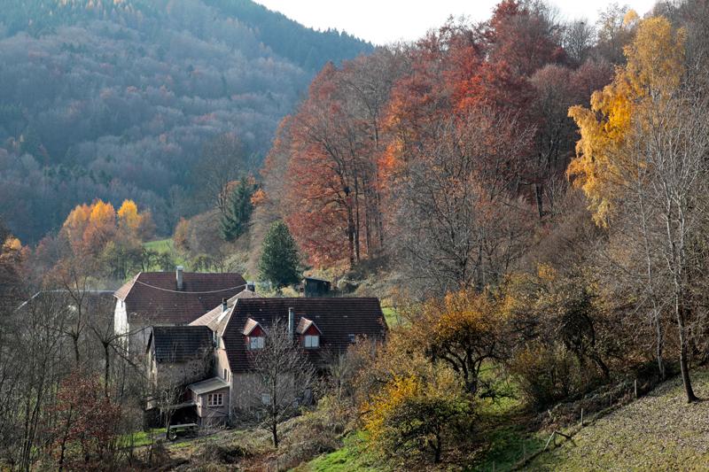 Paysage de la Vallée de la Bruche