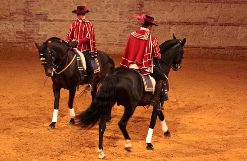 'Caballo Andaluz' Equestrian Show Caballerizas Reales