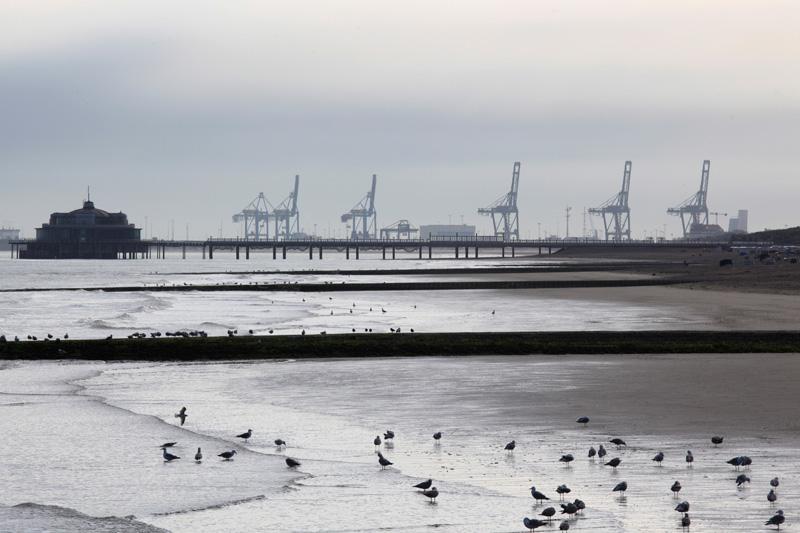 Sur fond de Zeebruges
