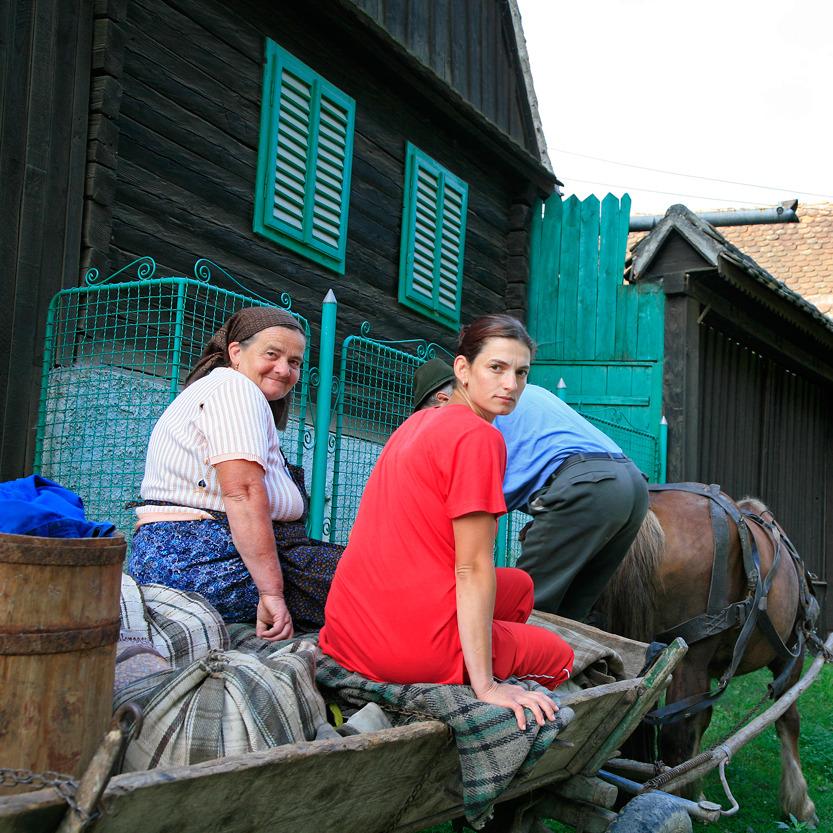 Accueil à la ferme dans le village de Sibiel