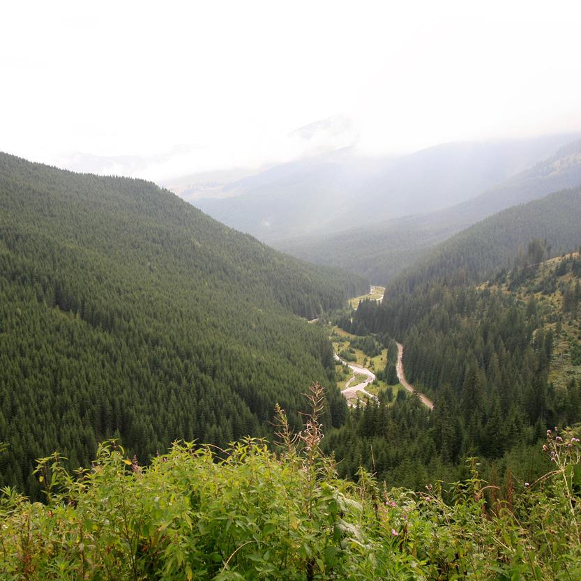 Col de Prislop