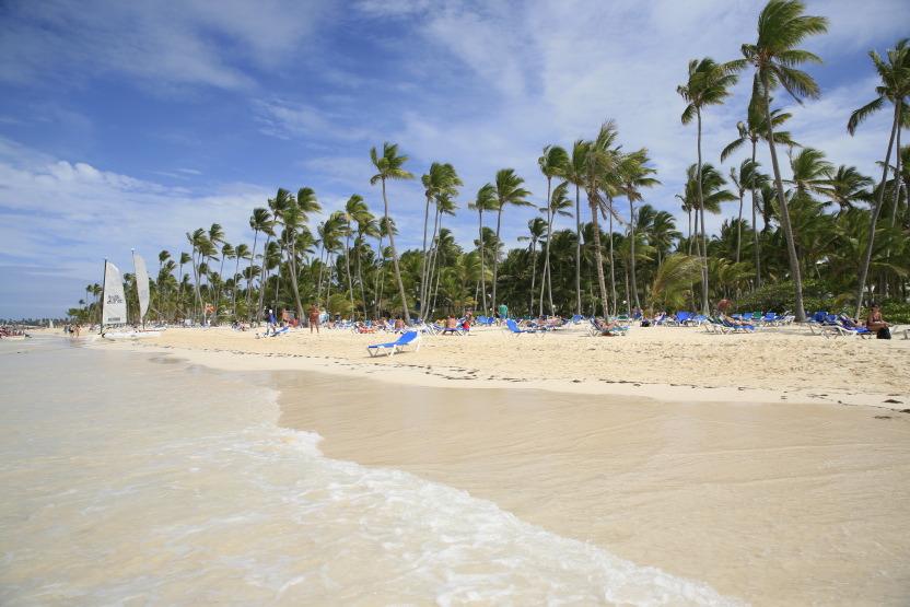 Le rideau des cocotiers sur la côte de Punta Cana