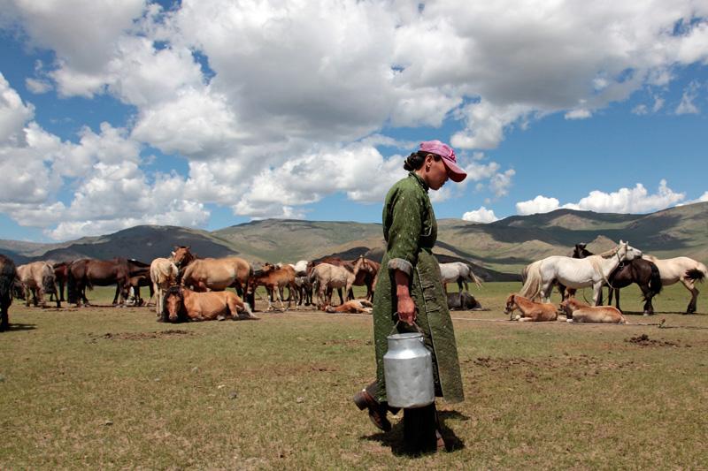 Le quotidien des nomades