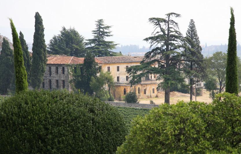 Le domaine Masi Agricola, héritage direct du poète Dante