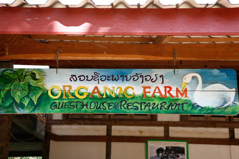 Organic Farm Restaurant & Guesthouse, Vang Vieng