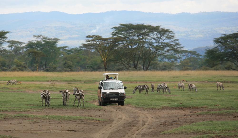 Parc National de Nakuru, c'est parti pour un 'safari'