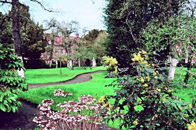 Le jardin du Begijnhof