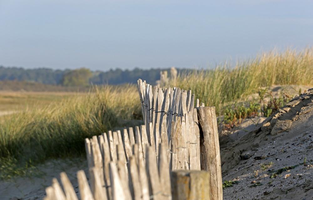 Baie de Somme, grandeur nature...