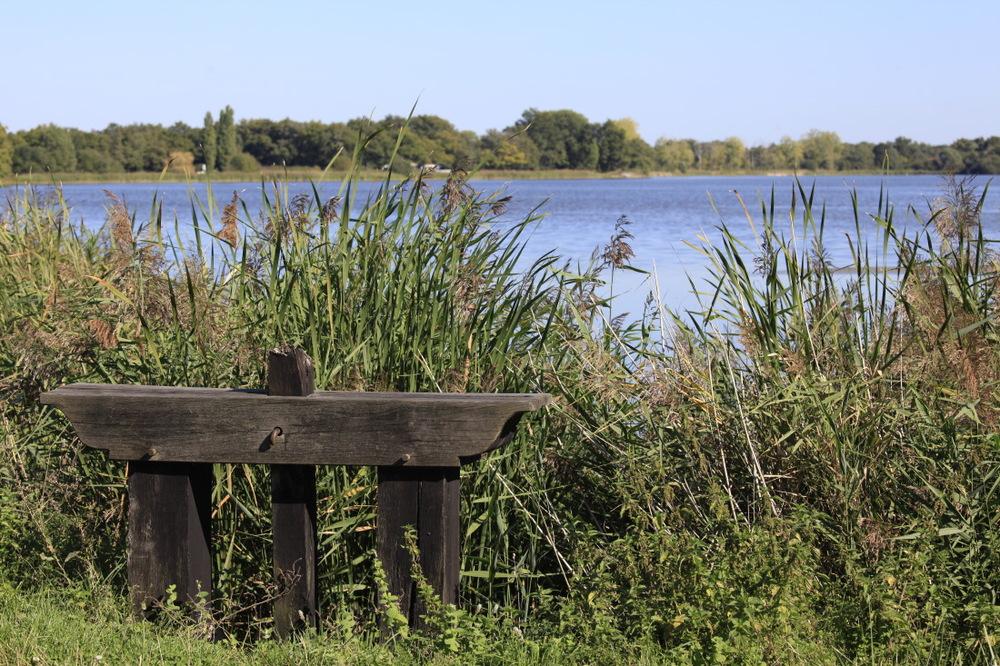 Autour de l'étang de la Gabrière