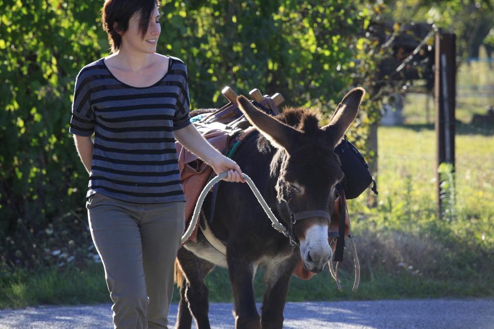 et les ânes d'amusants compagnons !
