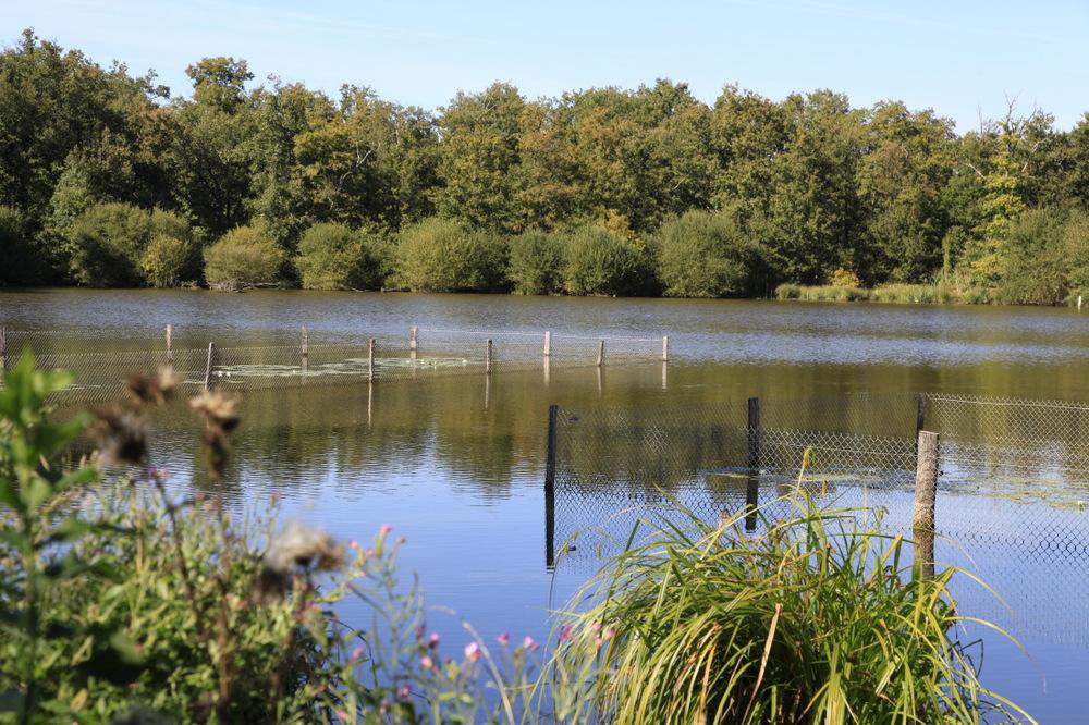 Rando vélo autour de l'étang de la Gabrière