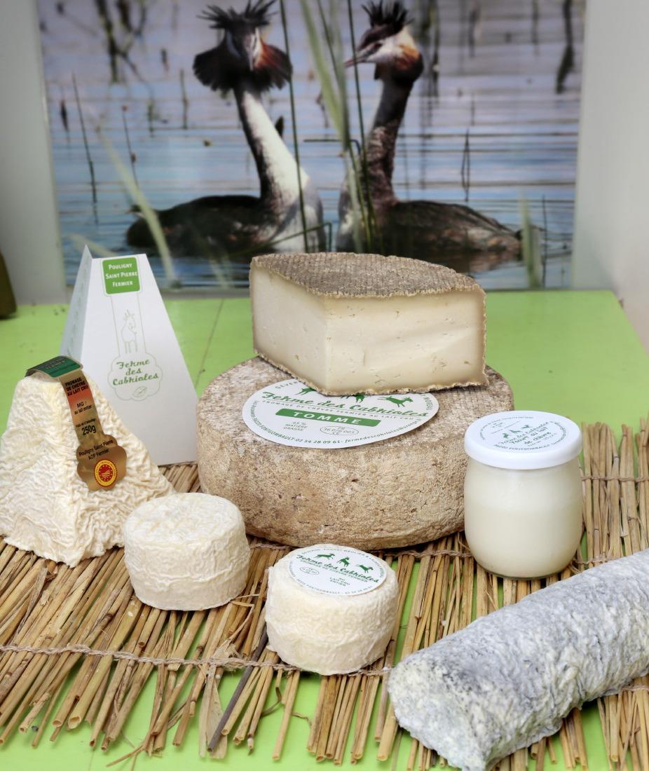 Dégustation du Pouligny-Saint-Pierre et autres produits du terroir