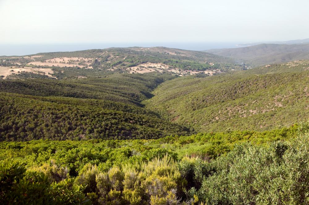 Plateaux verts de la Costa Verde
